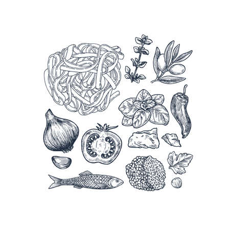 Tasty basil, tomato, olive, garlic, anchovy, truffle and pasta linear elements. Engraved illustration. Italian ingredients. Vector illustration