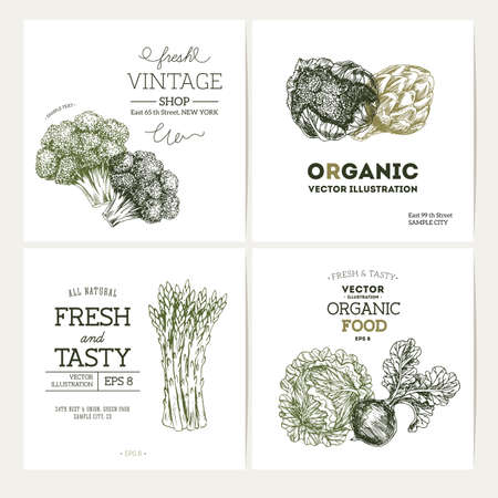 Organic food banner collection. Fresh vegetables design template.