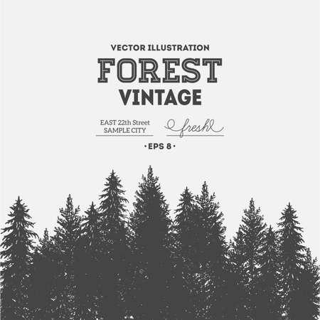 Pine forest. Journey design template. Vector illustration