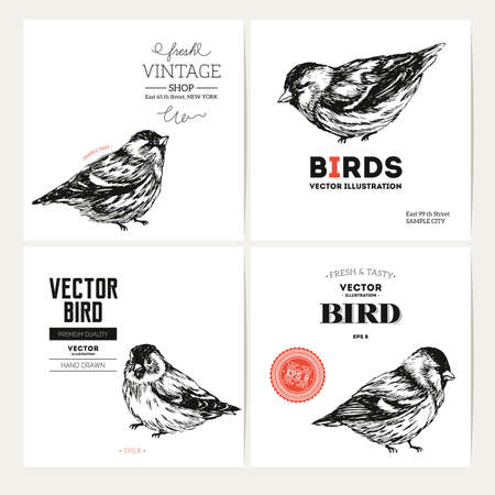 Vintage bird design template collection. Vector illustration Illustration