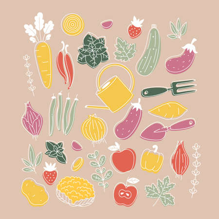 Collection of colored plants and vegetable illustrations. Organic fresh collection. Scandinavian style.
