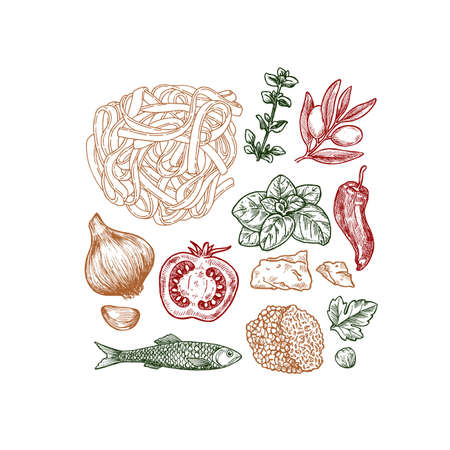 Engraved basil, tomato, olive, garlic, anchovy, truffle and pasta linear elements. Italian ingredients. Vector illustration Illustration