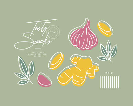 Minimalist food design template. Linear graphic. Ginger, garlic and rosemary. Scandinavian style. Vector illustration