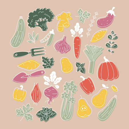 Collection of minimalist colored plants and vegetable illustrations. Organic fresh collection. Scandinavian style.