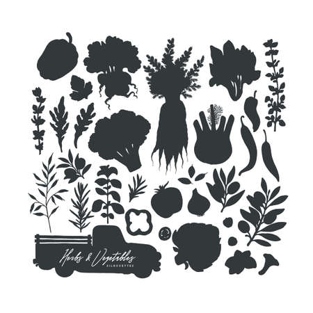 Vegetables and herbs vector silhouettes collection. Organic farm food set.