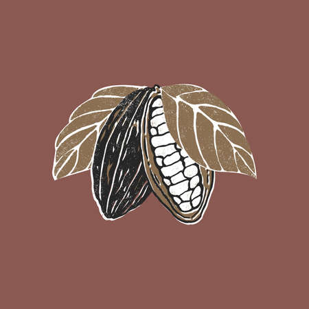 Cocoa bean. Minimalist abstract style illustration. Chocolate cacao beans.
