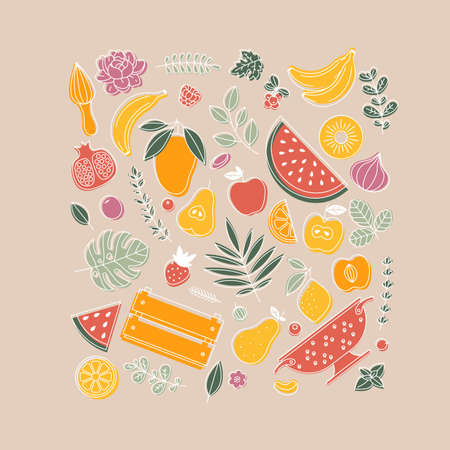 Various fruit collection. Linear graphic. Summer fruits set. Scandinavian style.
