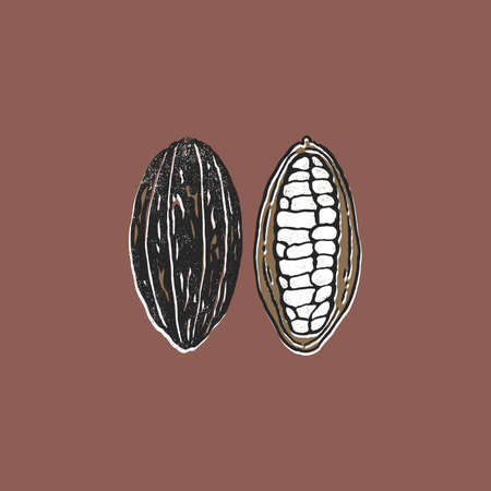 Gold and black cocoa bean. Minimalist abstract textured style illustration. Chocolate cacao beans.