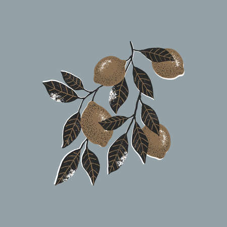 Gold and black lemon branch. Minimalist abstract textured style illustration. Citrus with leaves.