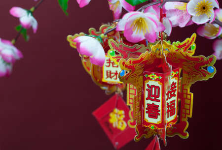 Chinese new year decorations. Chinese favourite flowers. Chinese new year craft