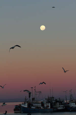 Rising moon over fishing harbour
