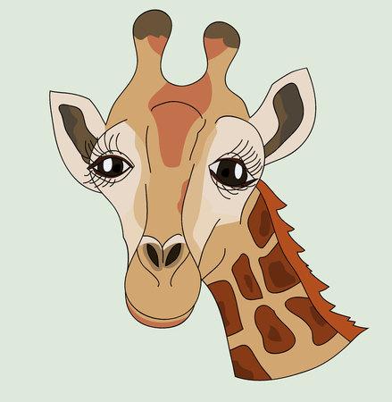 lash: Giraffe head