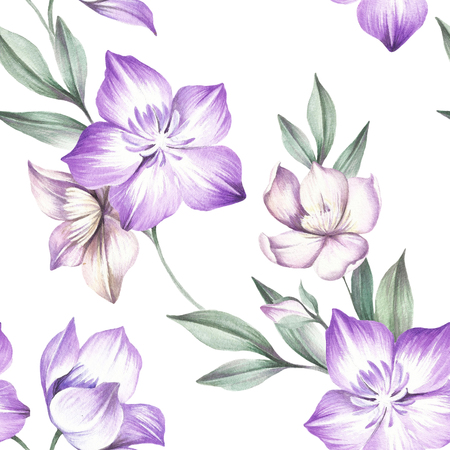 clematis: Seamless pattern with Clematis. Hand draw watercolor illustration.