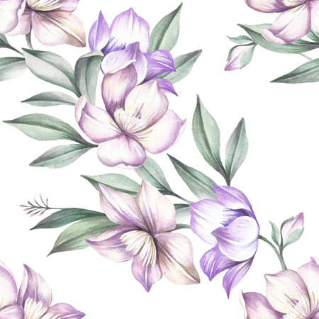 Seamless pattern with Clematis. Hand draw watercolor illustration.