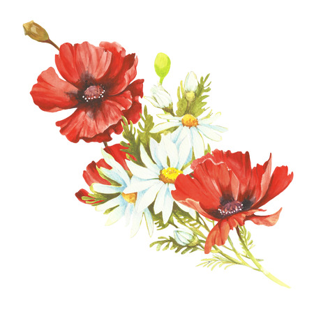 Bouquet with poppies and chamomiles. Hand draw watercolor illustration Stock Photo