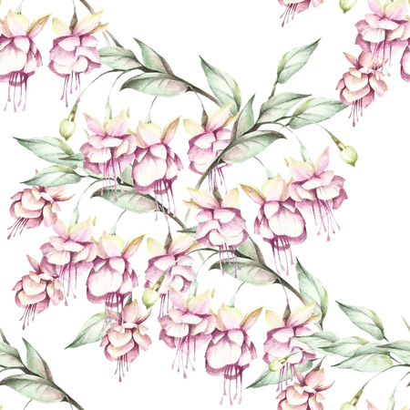 flexibility: Seamless pattern with fuchsia. Hand draw watercolor illustration. Stock Photo