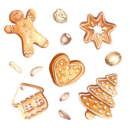 Set of gingerbread and nuts.Christmas.Hand draw watercolor illustration.
