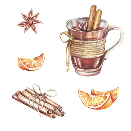 anise: A set of ingredients for mulled wine. Hand draw watercolor illustration