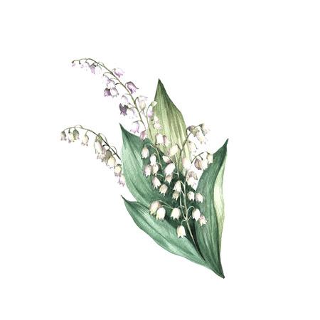 De afbeelding van een lelie van de vallei. Teken aquarel illustratie
