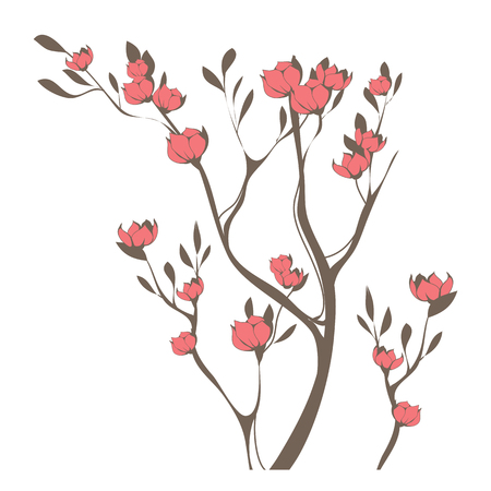 Beautiful image of cherry blossoms branch. Vector illustration