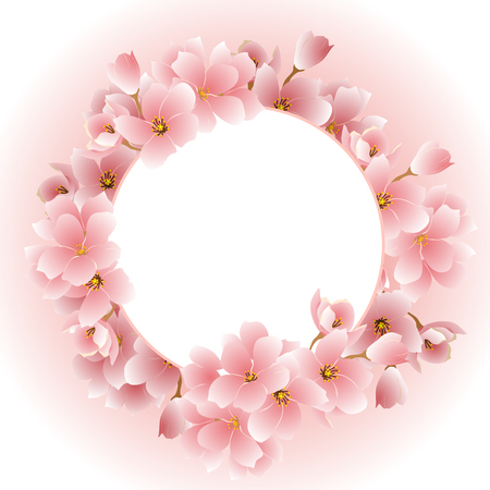Frame with blooming sakura flowers. Vector illustration. Illustration