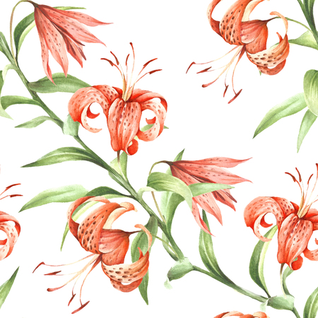 Seamless pattern with Tiger lily. Hand draw watercolor illustration.