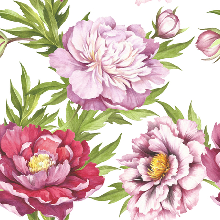 Seamless pattern with peonies. Hand draw watercolor illustration.