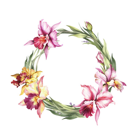 A wreath  of  Orchids. Hand draw watercolor illustration. Stock Photo