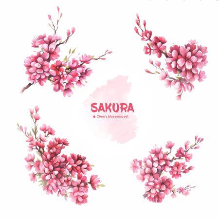 Sakura. Spring cherry blossom branch. Set. Watercolor illustration.