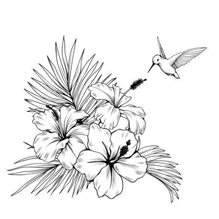Composition with hibiscus, palm leaves and hummingbird. Vector botanical illustration. Illustration
