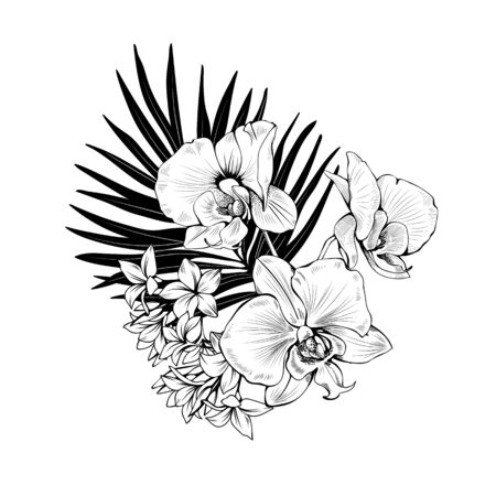 Composition with Orchids and palm leaves. Vector botanical illustration