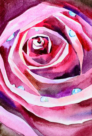 red rose petals close up original watercolor, rose top view, petals with water droplets Stock fotó