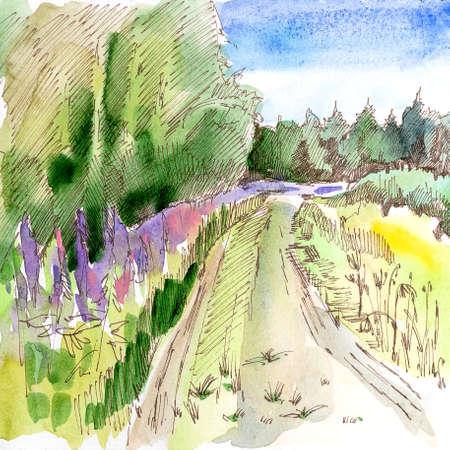 Forest landscape, sketch, green forest, country road, watercolor, pen, handmade. Standard-Bild