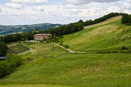 Summer season - view from the hill, near Sassuolo, Province of Modena, Region of Emilia-Romagna - Italy - Europe  photo