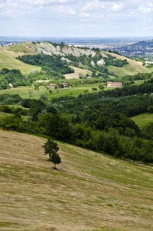 Summer season - view from the hill, near Sassuolo, Province of Modena, Region of Emilia-Romagna - Italy - Europe  photo