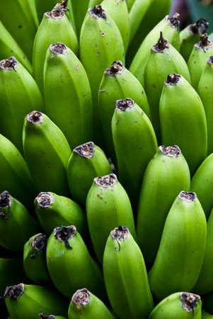 Nature s Garden - Bunch Of Green Bananas On A Banana Tree photo