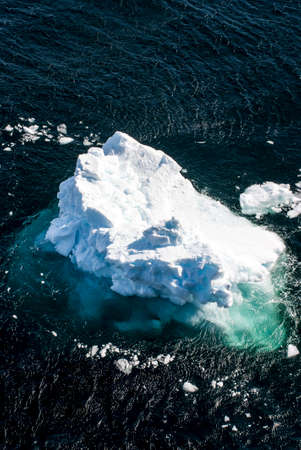 antarctic peninsula: Antarctica - Antarctic Peninsula - Climate Change - Global Warming - Pieces Of Floating Ice