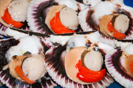 Seafood - Scallops - Two Types Of Meat In One Shell Stock Photo