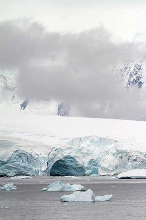 antarctic peninsula: Antarctica - Penguins In The Wild - Antarctic Peninsula Stock Photo