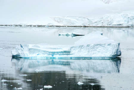 drydock: Antarctica - Non-Tabular Iceberg Floating In The Southern Ocean - Dry-dock Iceberg - close up - Travel Destination
