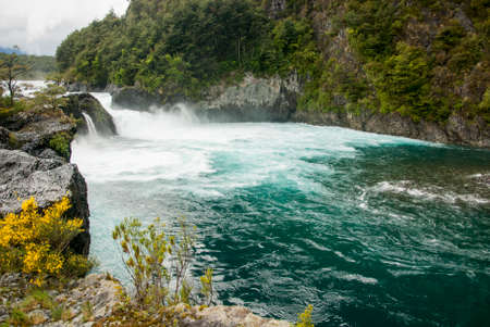 lagos: Vicente Prez Rosales National Park is located in Los Lagos Region, Llanquihue Province, of Chile.
