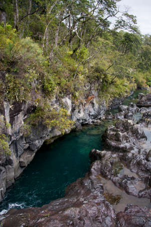 rosales: Vicente Prez Rosales National Park is located in Los Lagos Region, Llanquihue Province, of Chile.