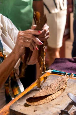 Close-Up photo of a woman preparing a cuban cigar in Casa de la Cultura, Trinidad, Sancti Spritus Province, Cuba, West Antilles, Central America. Photo taken on 3rd of November, 2019 Reklamní fotografie