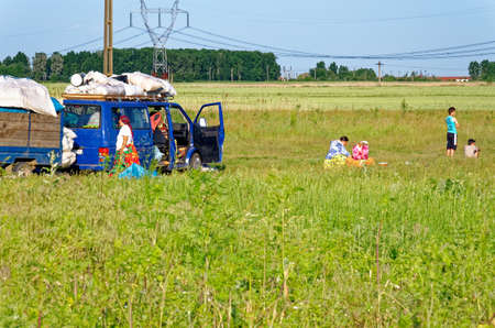 Travellers camp site on the outskirts of Dorobantu, Calarasi Romania - 28th of June 2011