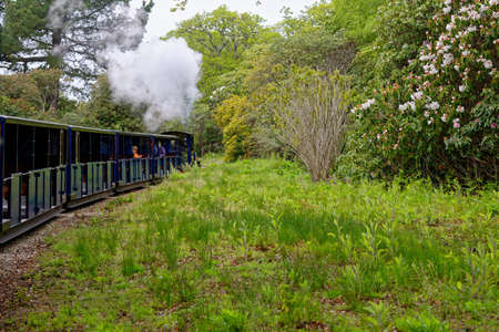 Exbury Gardens Railway which runs for 1.25 miles round the northern part of the these spectacular gardens. Miniature steam train at Exbury Gardens - Hampshire, England UK - 20th of May 2021 Editorial