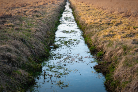 rushy: The image of small river Stock Photo