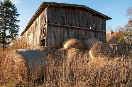 farm field: The image of old shed