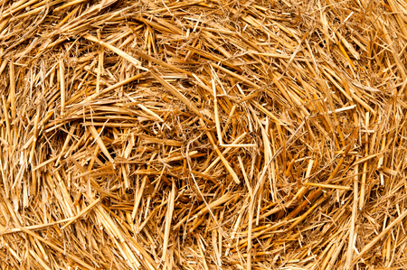 bales: Bales of straw background Stock Photo
