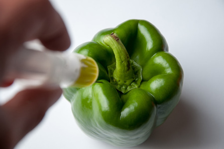 genetically modified organisms: GMO green pepper and syringe