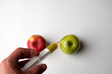apple gmo: Green and red apple with syringe. GMO Stock Photo